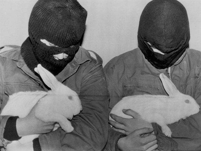 Frente de liberación animal